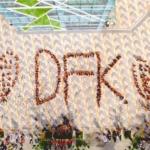 dfk-danang-2016-le-my-trinh-1